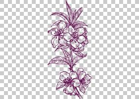 黑白花,黑白,花卉设计,线路,植物茎,花瓣,紫色,视觉艺术,对称性,