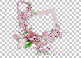 春花,石斛,分支,春天,开花,植物,丁香,粉红色,花瓣,人造花,花束,