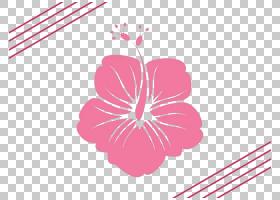 粉红色花卡通,花卉,植物群,花卉设计,线路,插花,植物,梅洛家族,圆
