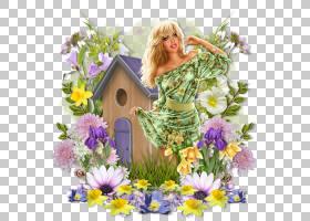 春花,春天,插花,花卉,薰衣草,花瓣,植物,野花,花束,植物群,花,切
