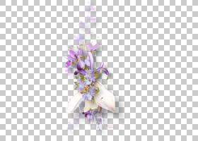 春花,花卉,插花,分支,植物群,开花,春天,薰衣草,静物摄影,紫色,丁
