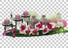 花卉剪贴画背景,花卉,插花,切花,花卉设计,花瓣,玻璃瓶,花,皮肤护