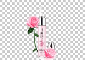 粉红色花卡通,洗剂,玫瑰,化妆品,香水,健康美容,皮肤护理,花瓣,玫