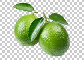 柠檬剪贴画,植物,橘子,灾难,柠檬柠檬,苦橙,朗普尔,柠檬,甜柠檬,
