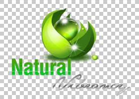 Apple Logo背景,徽标,绿色,水果,文本,食物,液体,苹果,叶,油,人皮
