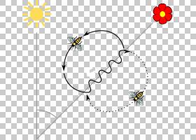 黑白花,机翼,飞蛾与蝴蝶,传粉者,植物群,黑白,线路,角度,材质,树,