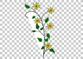 黑白花,花卉,草,树,植物群,黑白,线路,植物,植物茎,分支,面积,叶,