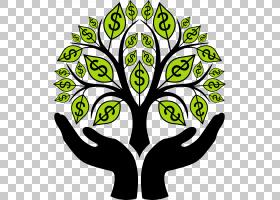 黑白花,草,绿色,植物群,视觉艺术,黑白,线路,木本植物,植物,植物