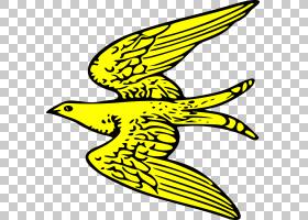 黑白花,黑白,机翼,喙,花,黄色,线路,符号,面积,叶,植物,纹饰,猛禽