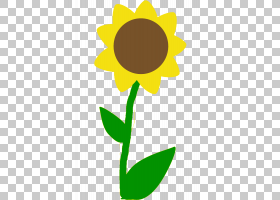 黑白花,黑白,植物茎,切花,花,黄色,花瓣,向日葵,叶,植物群,植物,