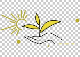 黑白花,黑白,线路,分支,花,黄色,树,文本,面积,叶,植物群,植物,花