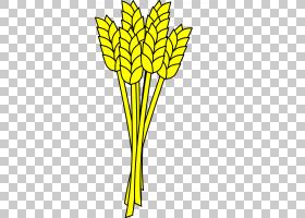 黑白花,黑白,线路,植物茎,分支,花,黄色,树,花瓣,商品,对称性,叶,