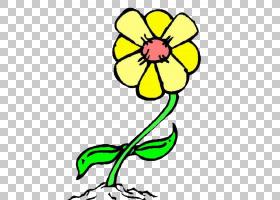 黑白花,黑白,线路,植物茎,切花,花卉,植物群,植物,景观,红色,贴花