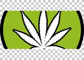 黑白花,黑白,线路,绿色,花,黄色,树,符号,对称性,叶,草,植物,传粉