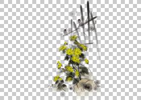 黑白花,黑白,花卉设计,细枝,蜂蜜,花瓣,分支,黄色,树,传粉者,叶,