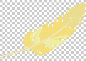黄色背景,线路,机翼,材质,商品,叶,植物,免费,羽毛,黄色,