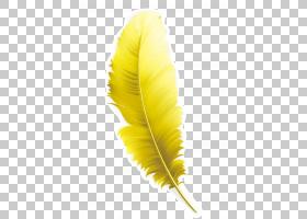 黄色背景,羽毛,材质,图层,免费,黄色,羽毛,