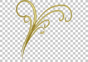 金刷,线路,黄色,圆,身体首饰,文本,植物群,植物,刷子,植物茎,花瓣
