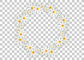 花卉背景,花卉设计,花瓣,身体首饰,线路,圆,花,黄色,白色,视频,孩