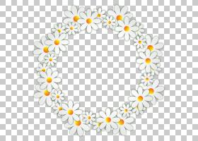 花卉背景,花卉设计,花瓣,身体首饰,线路,圆,黄色,白色,相框,绘图,