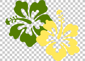 家谱图,草本植物,梅洛家族,花卉设计,线路,植物茎,种子植物,黄色,