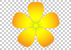 农历新年背景,符号,对称性,传粉者,叶,橙色,黄色,徽标,花,农历新
