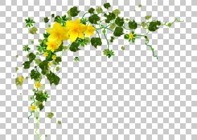 绿叶背景,花卉设计,线路,植物茎,分支,树,叶,植物群,植物,图像扫