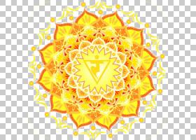 花卉背景,花卉设计,视觉艺术,圆,线路,对称性,花,黄色,灵气,PADMA