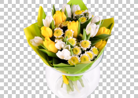 花卉背景,花盆,插花,植物,花卉,德兰士瓦雏菊,花盒,复活节,水果,