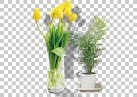 花卉背景,植物茎,切花,花卉设计,人造花,花瓶,黄色,插花,花盆,室