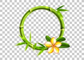 花卉背景框,圆,草,线路,花卉设计,绿色,花,黄色,符号,身体首饰,花