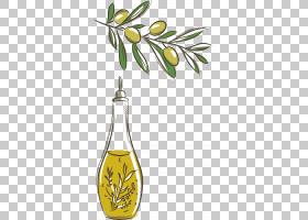 橄榄树,水果,树,植物群,饮具,食物,植物,分支,叶,花,黄色,植物油,