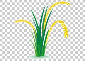 卡通棕榈树,棕榈树,切花,树,草族,线路,植物茎,草,花盆,叶,花,黄