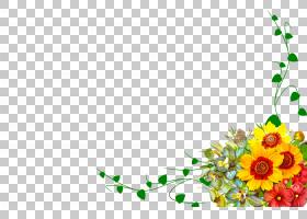 花卉设计,植物,向日葵,计算机,仪表,花,黄色,叶,花瓣,植物茎,切花