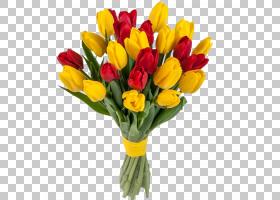 百合花卡通,百合家族,插花,花卉,植物,植物茎,颜色,红色,生日,花