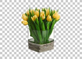 百合花卡通,百合家族,插花,花盆,植物,丝绸,花束,切花,郁金香花瓶