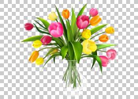 百合花卡通,种子植物,百合家族,植物茎,花瓣,插花,花卉,黄色,植物