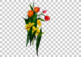 情人节背景,花卉,花束,植物茎,插花,切花,种子植物,花卉设计,黄色