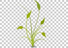卡通自然背景,花卉设计,草,线路,植物茎,分支,绿色,花,黄色,草族,