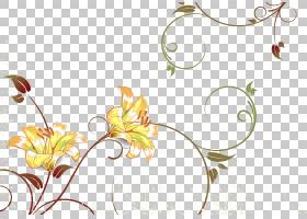 水彩花卉背景,线路,花瓣,分支,黄色,圆,植物群,优雅,花卉设计,水