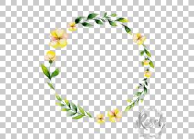 水彩花环背景,头盔,发饰,黄色,身体首饰,花瓣,复活节,Fotolia,绘