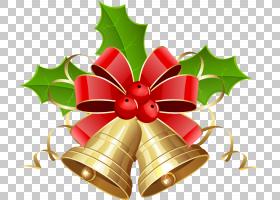 圣诞铃铛卡通,水叶亚目(Aquifoliales),水杨科,花,霍莉,圣诞卡,金