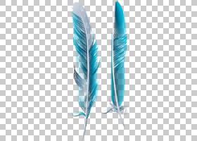 翼箭,羽毛,线路,机翼,水,绿松石,箭头,免费,孔雀,打印,头发,颜色,