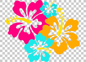 花卉剪贴画背景,线路,插花,切花,种子植物,梅洛家族,花卉设计,黄