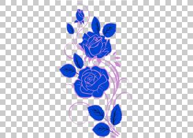 花卉背景,线路,玫瑰家族,钴蓝,花卉设计,电蓝,紫色,玫瑰秩序,植物