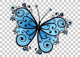帝王蝴蝶画,飞蛾与蝴蝶,刷脚蝴蝶,帝王蝴蝶,传粉者,视觉艺术,线路