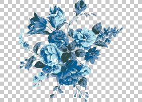 族的图形,花卉设计,插花,切花,分支,花瓣,玫瑰家族,植物,绘图,玫