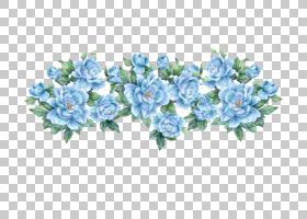 族的图形,花卉设计,插花,花卉,花瓣,玫瑰家族,玫瑰秩序,植物群,植