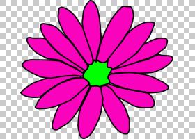 花卉背景,大丽花,线路,洋红色,植物茎,切花,花卉设计,圆,花卉,对