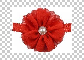 花卉剪贴画背景,发饰,红色,服装辅料,头发,花,花瓣,切花,